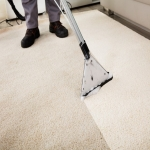 Professional Cleaning in Acton Scott 10