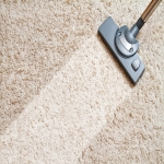 Carpet Cleaners UK in Stirling 7