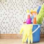 Professional Cleaners in Ansley Common 10