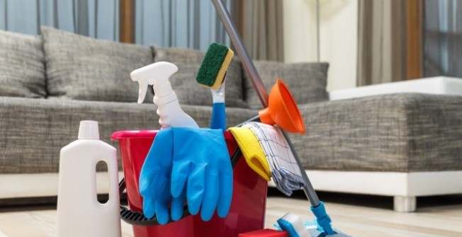 Domestic Cleaners in Blagdon